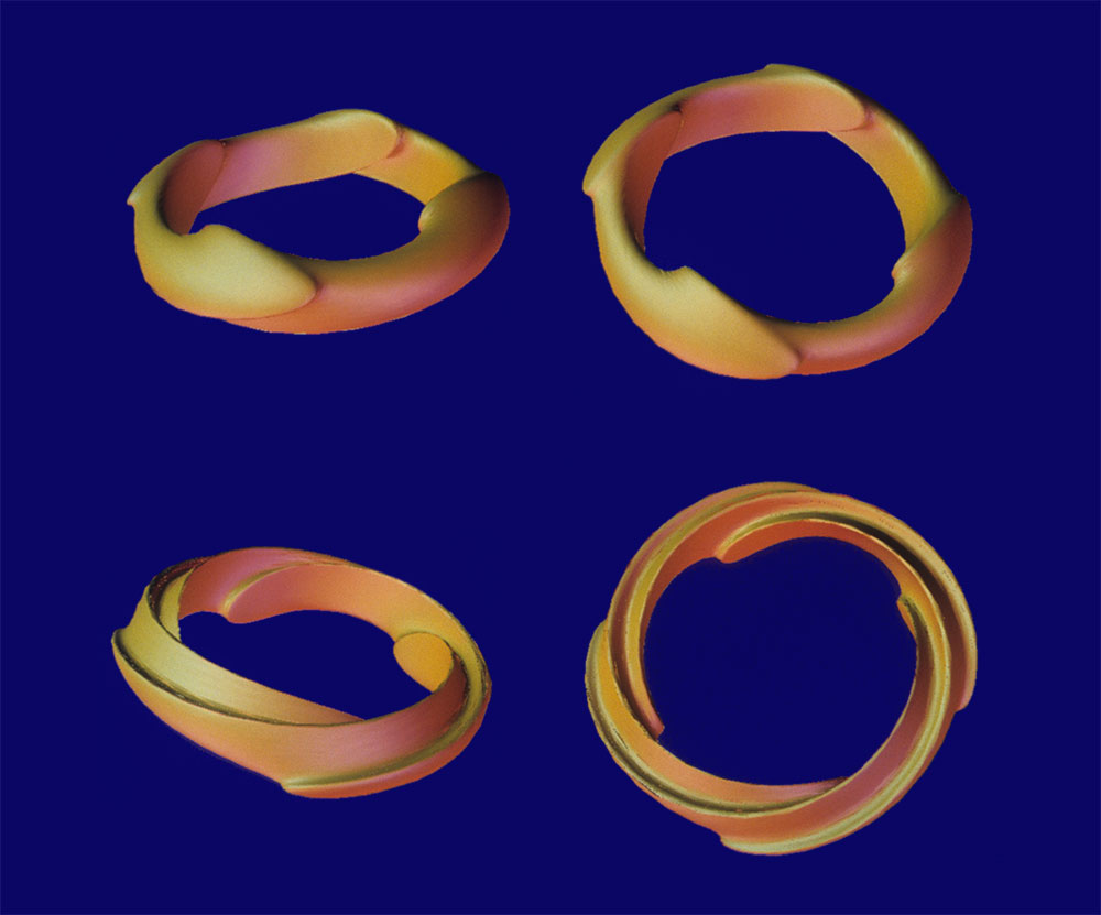 Dolphin Rings